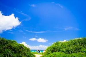 仕事セミナー青い海