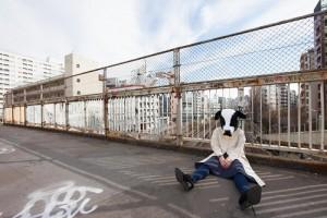 優柔不断な牛